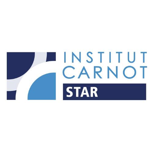 Institute Carnot Star
